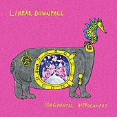Fragmental Hippocampus by Linear Downfall
