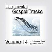 Instrumental Gospel Tracks Vol. 14 by Fruition Music Inc.