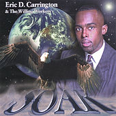 Soar by Eric Carrington