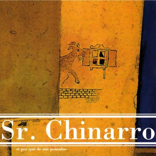 El Porqué de Mis Peinados by Sr. Chinarro