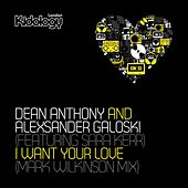 I Want Your Love (Mark Wilkinson Mix) (feat. Sara Kerr) by Dean Anthony