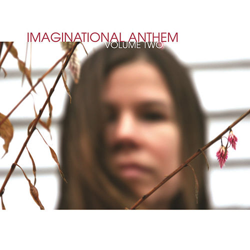 Imaginational Anthem Vol 2 by Various Artists