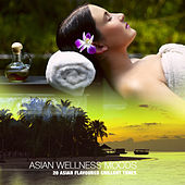 Asian Wellness Moods (20 Asian Flavoured Chillout Tunes) by Various Artists
