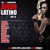 Amor Latino, Vol. 12 - 15 Big Latin Hits & Latin Love Songs (Bachata, Merengue, Salsa, Reggaeton, Kuduro, Mambo, Cumbia, Urbano, Ragga) by Various Artists