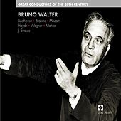 Great Conductors of the 20th Century - Bruno Walter by Various Artists