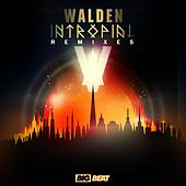 Intropial Remixes by Walden
