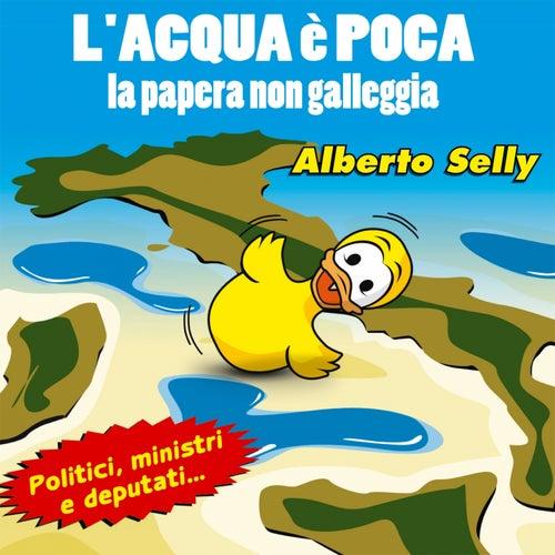 L'acqua è poca, la papera non galleggia (Politici, ministri e deputati) by Alberto Selly