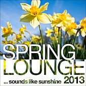 Spring Lounge 2013 (Sounds Like Sunshine) by
