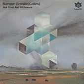 Wall Cloud & Wildflowers - Single by Summer