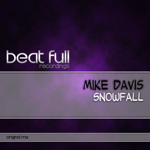 Snowfall by Mike Davis