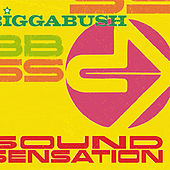 Sound Sensation by Various Artists