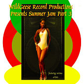 Summer Jam, Pt. 3 by Various Artists