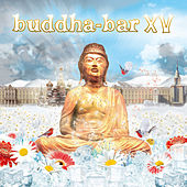 Buddha-Bar XV by Various Artists