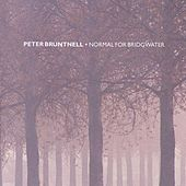 Normal For Bridgewater by Peter Bruntnell