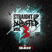 Straight Up Dubstep! Vol. 3 by Various Artists