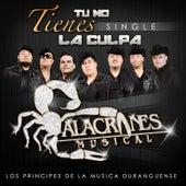 Tu No Tienes la Culpa by Alacranes Musical