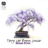 Bonzai Drive by Terry Lee Brown Jr.