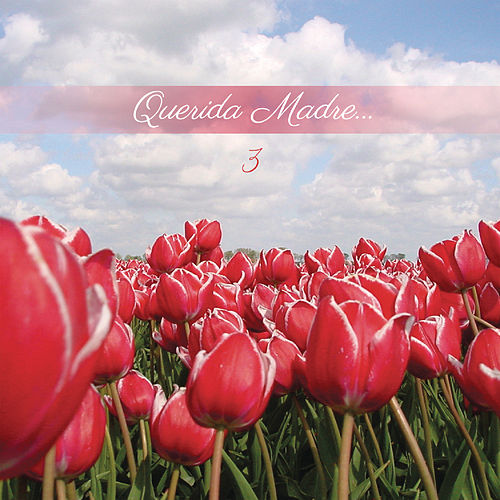 Querida Madre 3 by Various Artists