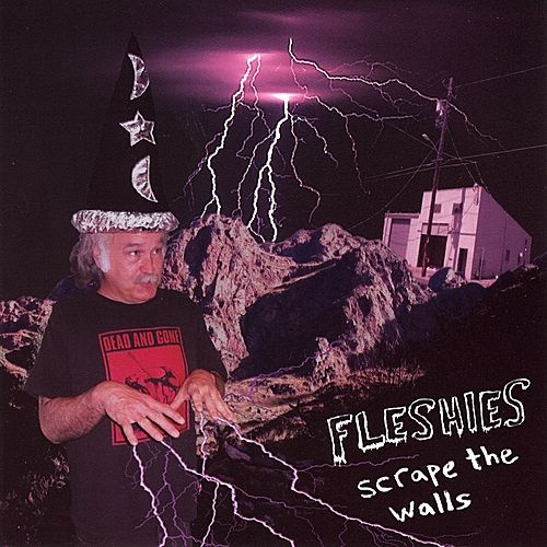 Scrape the Walls by Fleshies