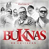 Te Gusta Que Te Den by Los Buknas De Culiacan