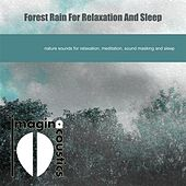 Forest Rain for Relaxation and Sleep by Imaginacoustics