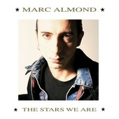 The Stars We Are by Marc Almond