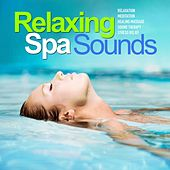 Relaxing Spa Sounds, Vol. 3 (Gentle Instrumental Music and Pure Nature Sounds for Relaxation, Meditation, Healing Massage, Sound Therapy, Stress Relief, Good Sleep) by Wellness