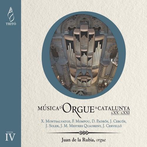 Música d'Orgue a Catalunya, Siglo XIX-XXe, Vol. 6 by Juan de la Rubia