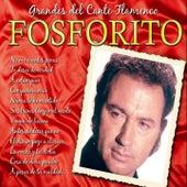 Grandes del Cante Flamenco : Fosforito by Fosforito