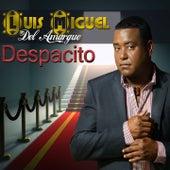 Despacito by Luis Miguel del Amargue