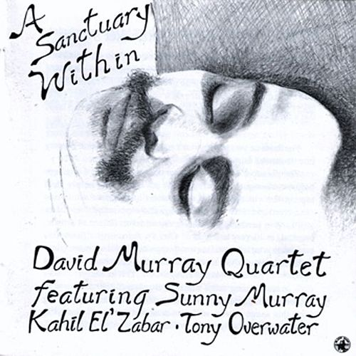 A Sanctuary Within by David Murray