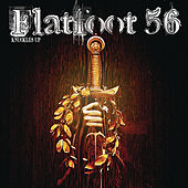 Knuckles Up by Flatfoot 56