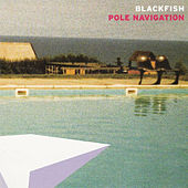Pole Navigation by Blackfish