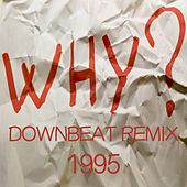 Why (Downbeat Remix 1995) by Disco Fever