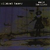 Wildcat Tamer by Dale Hawkins