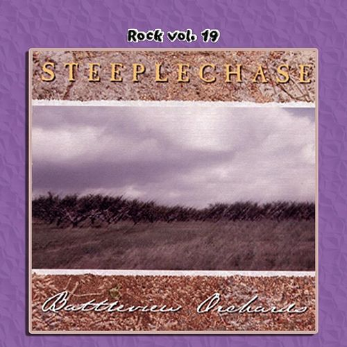 Rock Vol. 19: Steeplechase by Steeplechase