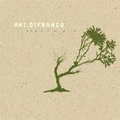 Reprieve von Ani DiFranco