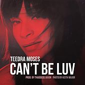 Can't Be Luv by Teedra Moses