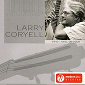 Larry Coryell by Larry Coryell