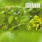 Spring Has Come by SHAAM