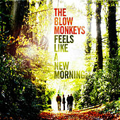 Feels Like a New Morning by The Blow Monkeys