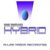 Hybrid by Burak Harsitlioglu