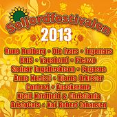 Seljordfestivalen 2013 by Various Artists