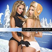 Winter Escapades by Various Artists