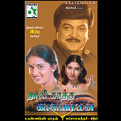 Thaalikaatha Kaaliamman (Original Motion Picture Soundtrack) by Various Artists