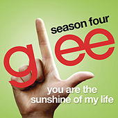You Are The Sunshine Of My Life (Glee Cast Version) by Glee Cast