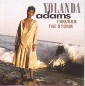 Through The Storm by Yolanda Adams