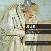 Suk Ripening, Praga, Epilogue, Fairy Tale by Various Artists