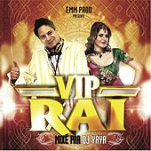 Vip raï by Various Artists