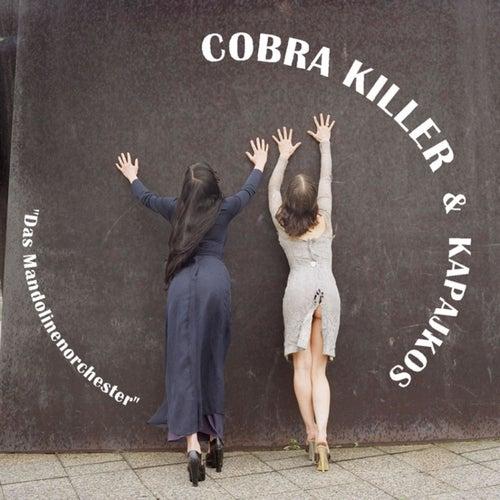 Das Mandolinenorchester by Cobra Killer